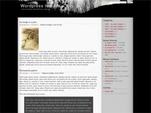 PDawn - 2 column widget enabled WP Theme